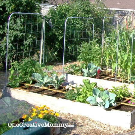 DIY #Garden #Trellis from OneCreativeMommy.com {Step by step instructions for creating a trellis from pipe!}